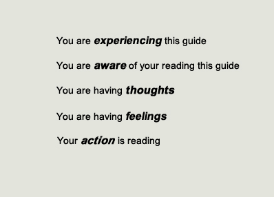 You are experiencing this guide. You are aware of reading this guide. You are having thoughts. You are having feelings. Your action is reading.